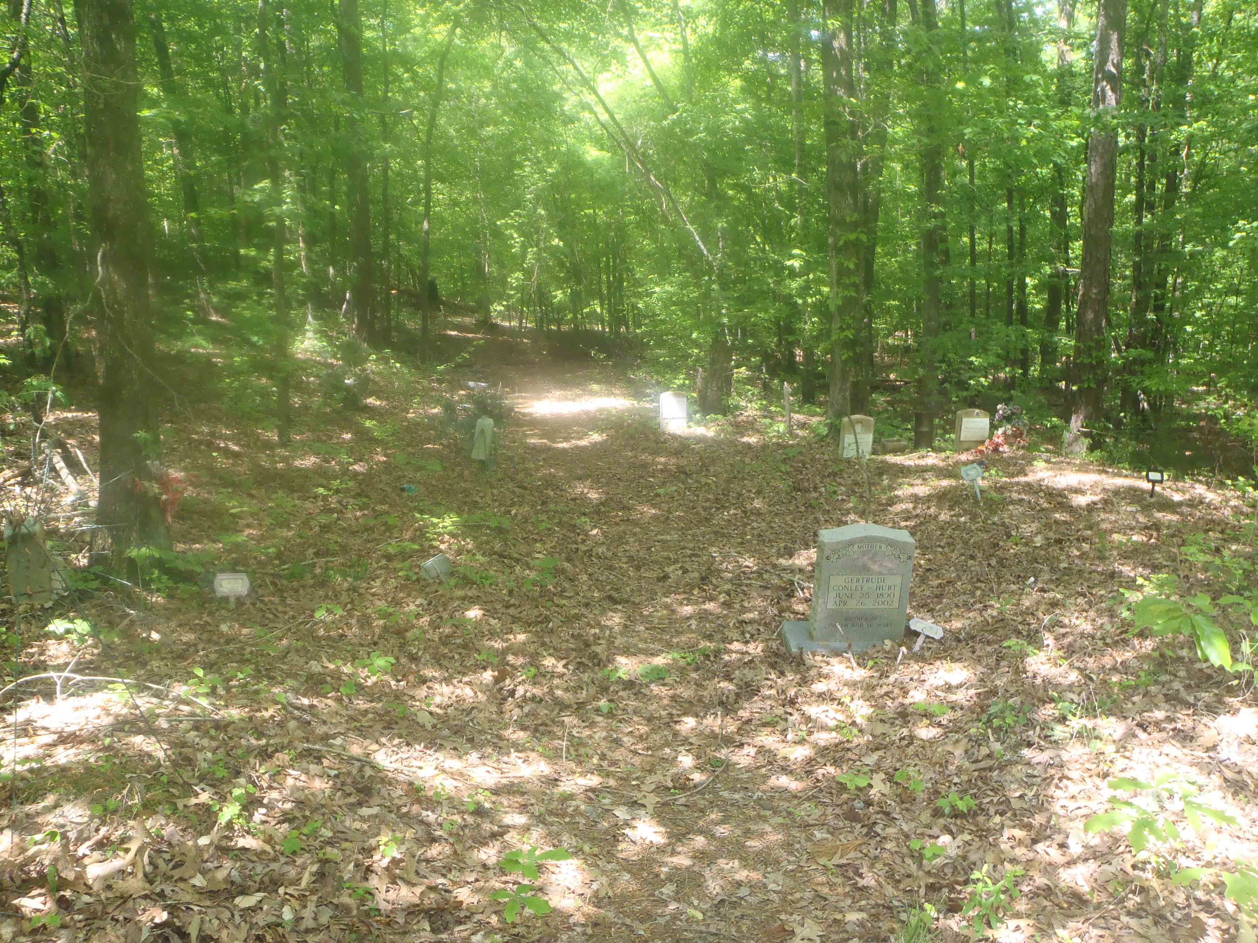 Cemetery where Mississippi John Hurt is buried
