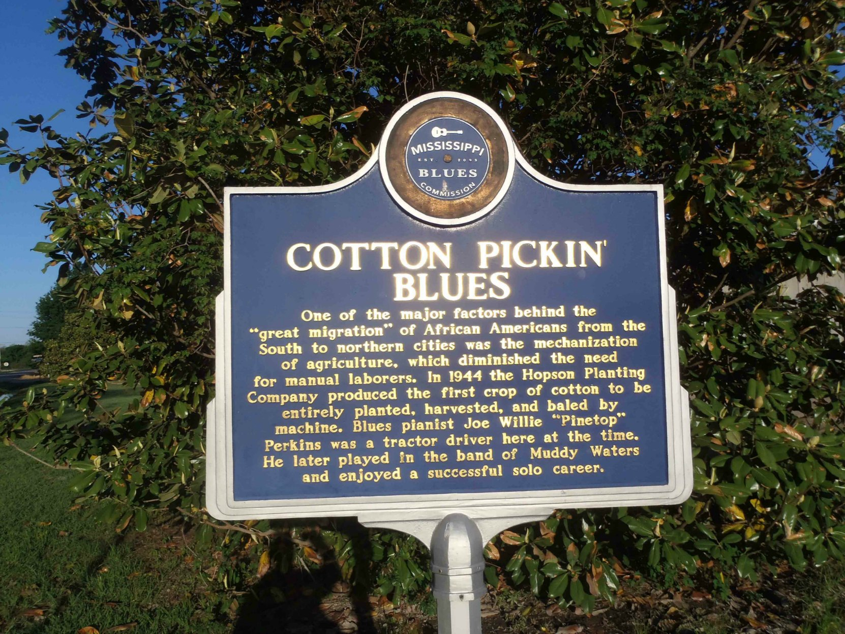 Mississippi Blues Trail marker for Cotton Pickin' Blues, Hopson Farm, Highway 49, Coahoma County, Mississippi.