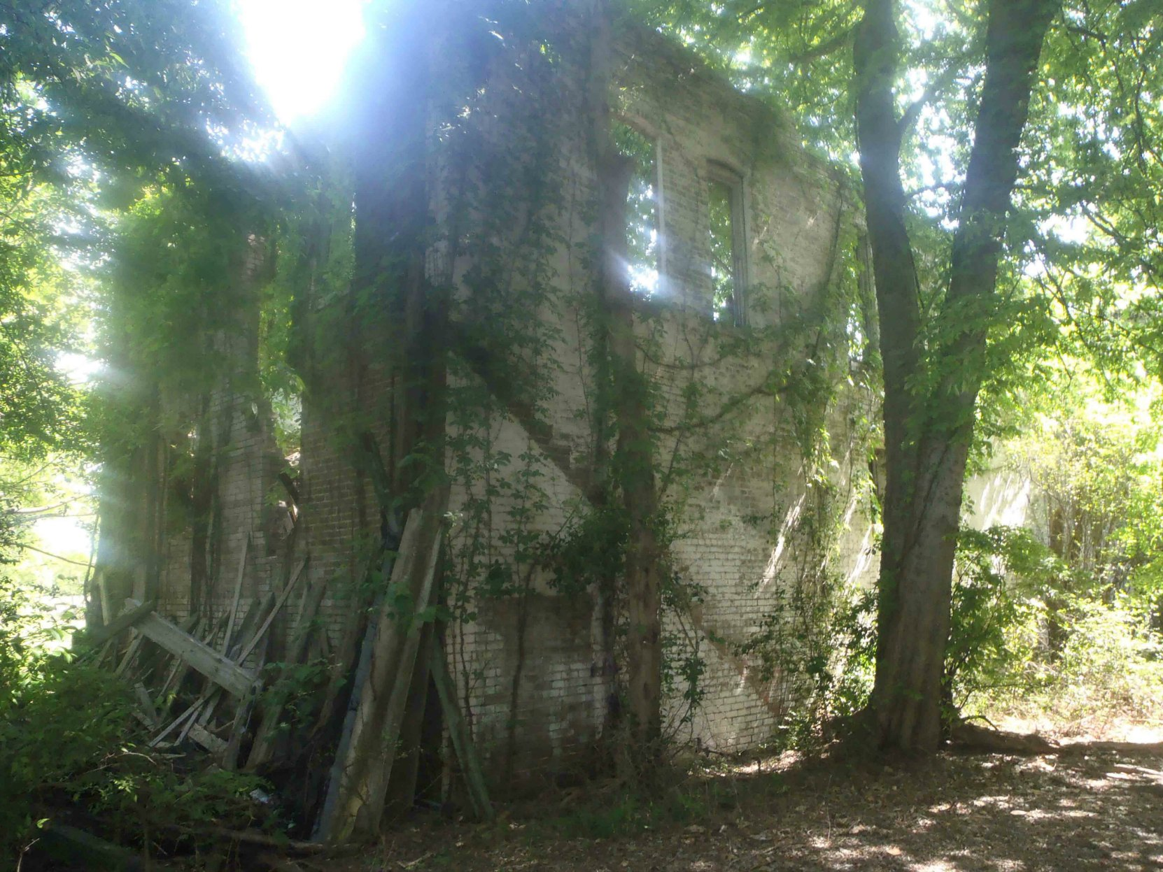 The ruins of Bryant's Grocery, Money, Leflore County, Mississippi. This was once the rear side of the building.