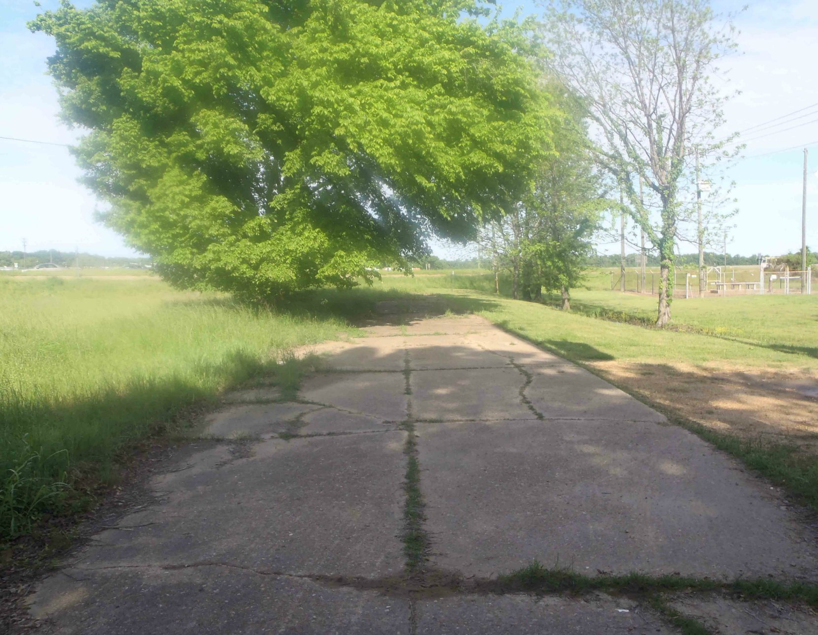The old road on the east side of the present intersection of Highway 49E and Highway82, Leflore County, Mississippi, looking west.
